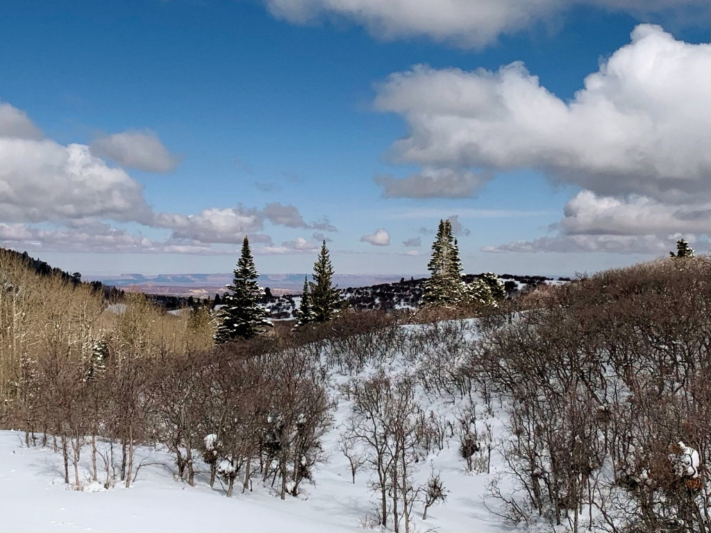 Winter in the Abajos with Canyonlands in the distance.  Chris Jolley photo